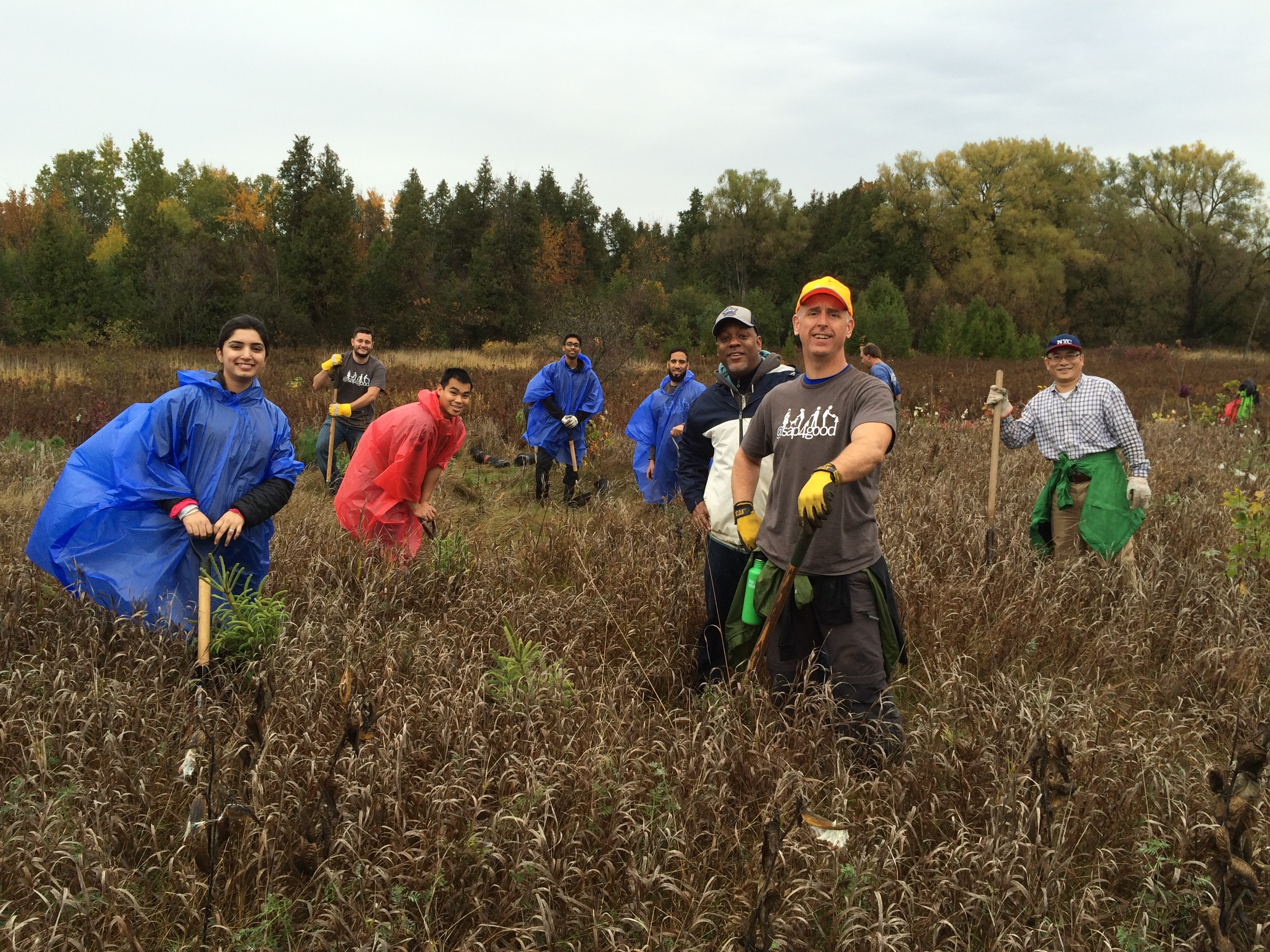 SAP Canada employees planting trees with Ontario Streams